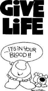 ziggy blood